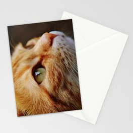 cat face 4 Stationery Cards