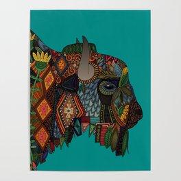 bison teal Poster