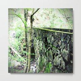 Vaughan's Woods Bridge Metal Print