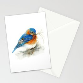 Eastern Bluebird Nesting Stationery Cards