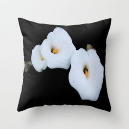 Three Calla Lilies Isolated On A Black Background Throw Pillow