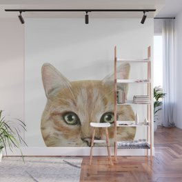 Golden British shorthair, America shorthair, cat, acrylic illustration by miart Wall Mural