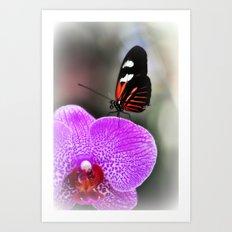 Butterfly Garden 3 Art Print