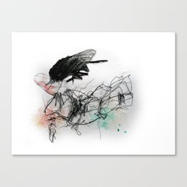 Fly Head Canvas Print