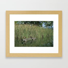 Calm and peace near the lake Framed Art Print