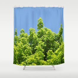 Skywise Shower Curtain