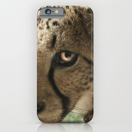 Cheetah iPhone & iPod Case