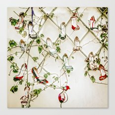 Evergreen everblossom Canvas Print