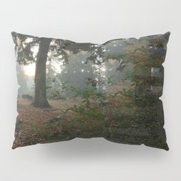 Divided In Fall (There Are No Picnics Here) Pillow Sham