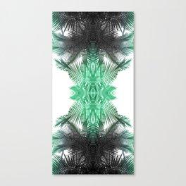 klepsydra fern Canvas Print