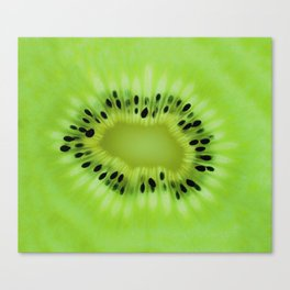 Kiwi fruit pattern Canvas Print