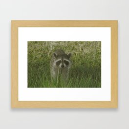 Ahra-Koon-Em Fx  Framed Art Print
