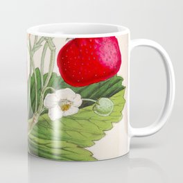 Strawberry Delights Vintage Botanical Floral Flower Plant Scientific Illustration Coffee Mug