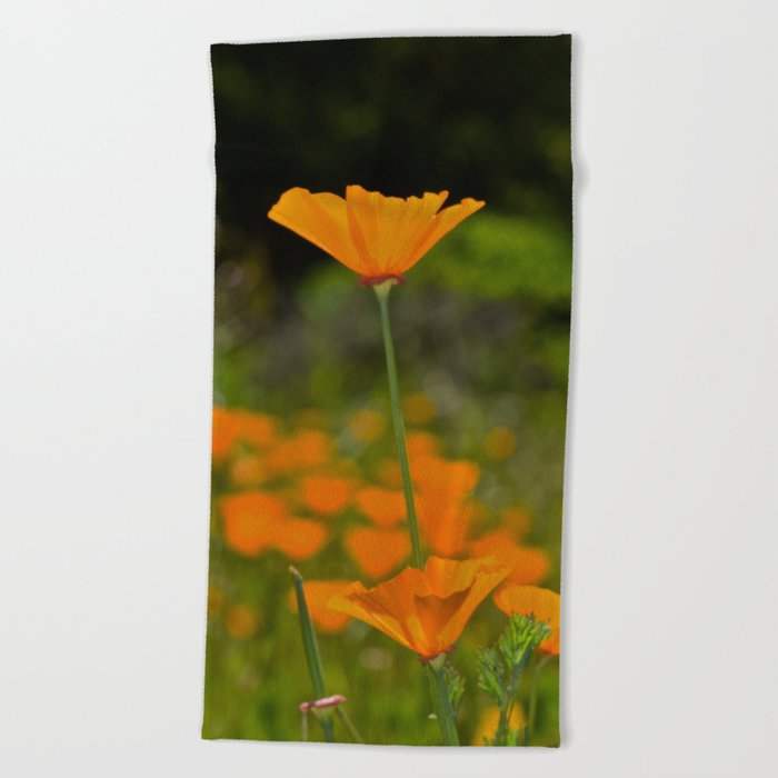 Tall Poppy Beach Towel