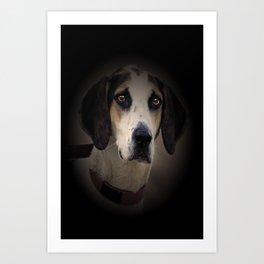 Hound Art Print