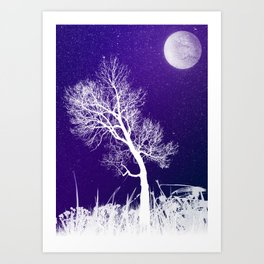 Pale Moon, Pale Birch Art Print