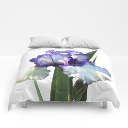 Iris 'Freedom Song' on white Comforters