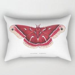 Ceanothus Silkmoth (Hyalophora euryalus) Rectangular Pillow