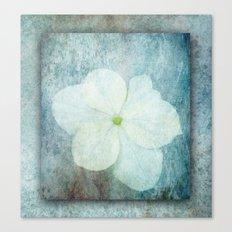 3D Hydrangea Canvas Print