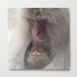 Snow Monkey Mother and Baby Metal Print