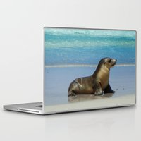seal Laptop & iPad Skins featuring Seal by Mel Forshee