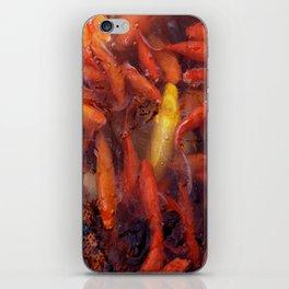 SEA OF GOLD iPhone Skin