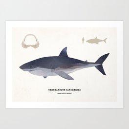 The Great White Shark Art Print