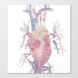Heart (Biro) Canvas Print