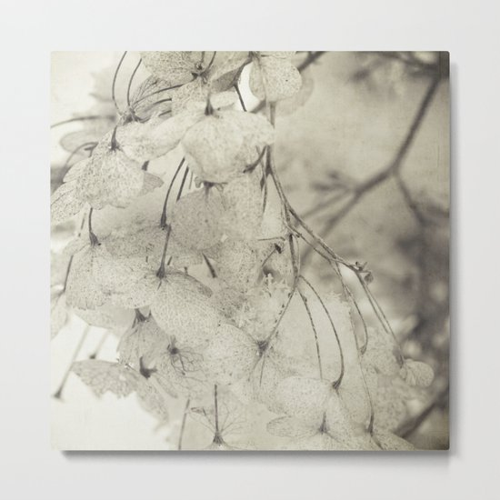 snow and flowers Metal Print
