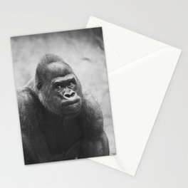 The Look Of A Silver Back Stationery Cards