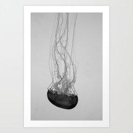 Jellyfish Basics no. 1 Art Print