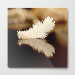 Feather Reflection Metal Print