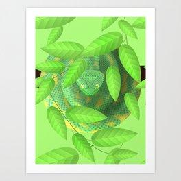 Bush viper Art Print