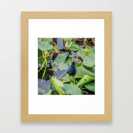 Wow I am Magical Framed Art Print