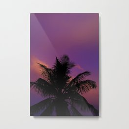 Florida skies Metal Print
