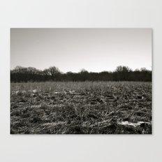 Empty Space in Kalamazoo, MI Canvas Print