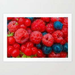 Berries of summer forest harvest Art Print