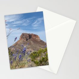 Ocotillo Cactus in the Desert Stationery Cards
