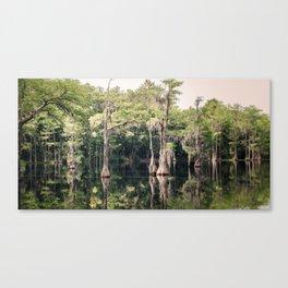 Florida Beauty 9 Canvas Print