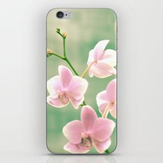 Orchid Ⅱ iPhone Skin