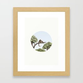 Common Ringtail Possum (Pseudocheirus peregrinus) Framed Art Print