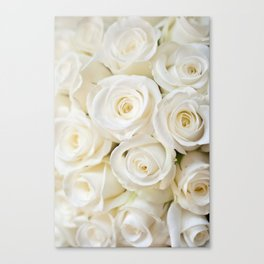 Elegant White Roses Canvas Print