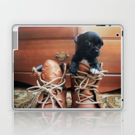 Teddy.  Laptop & iPad Skin