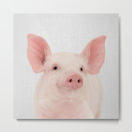 Pig - Colorful Metal Print