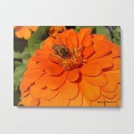 I Bee Working Metal Print