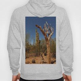 In The Desert Hoody