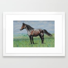Snowy The Nokota Horse Framed Art Print