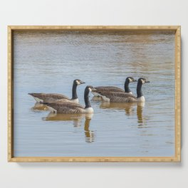 Canadian geese in the lake autumn (Branta canadensis) Serving Tray