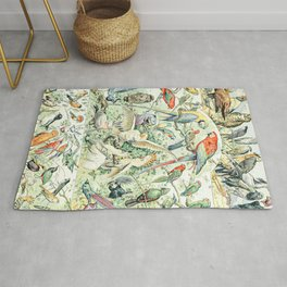 Wild Bird Diagram // Oiseaux V by Adolphe Millot XL 19th Century Science Textbook Artwork Rug