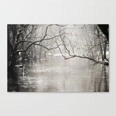 French Creek Canvas Print